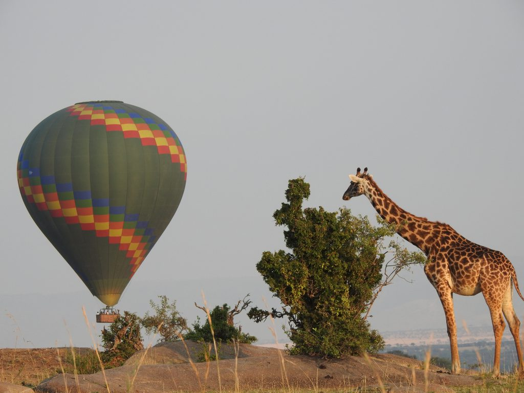 Balloon Safaris togoro